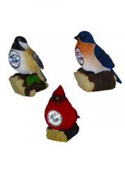 Solar Spotlights Assorted Birds