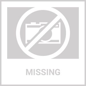 10 Watt Solar Pond Pump with Battery, Solar Light and Fountain