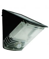 Black Wedge Motion Activated Solar Spotlight